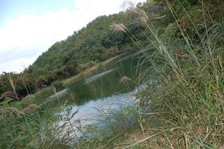 2008-10-11_54.jpg