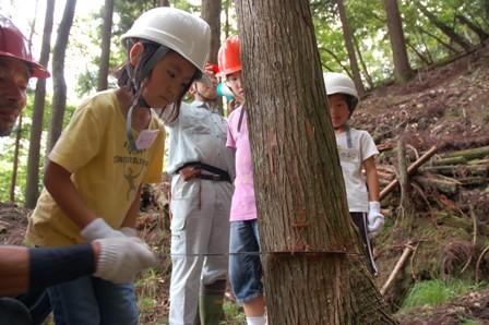 2009-07-18_52.JPG